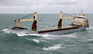 Carisbrooke Shipping and Marlink Group extend partnership to include Telemar service and maintenance